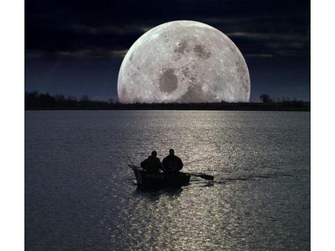 Moon Fishing